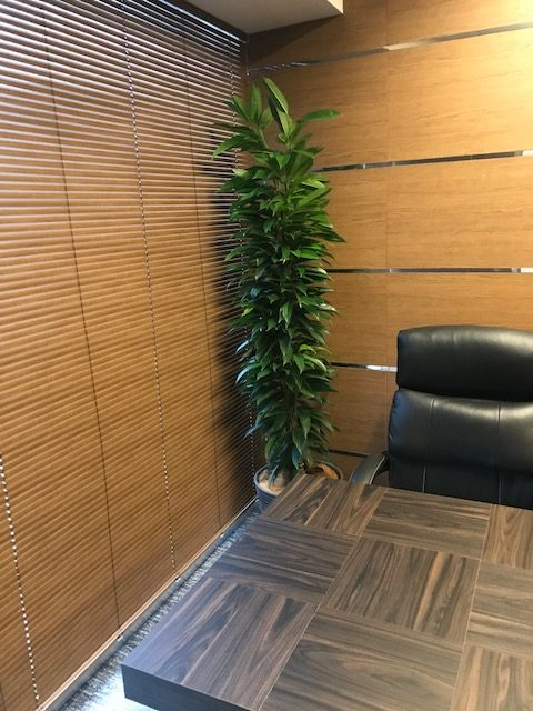 木の質感とグリーンで上質な空間に